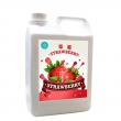 Strawberry Crushed Concentrated Juice
